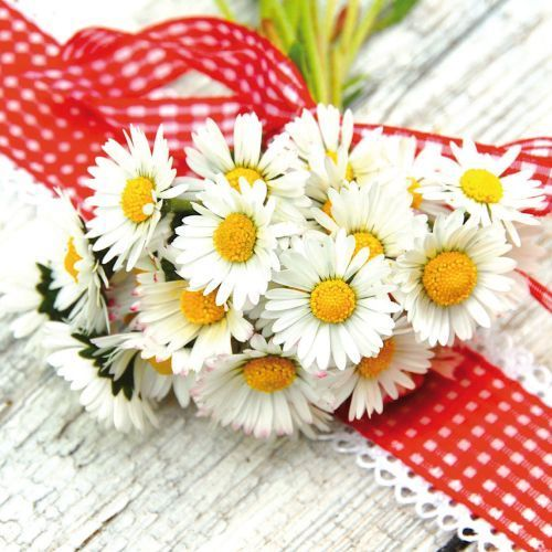 "Greeting card ""Bouquet of daisies"""