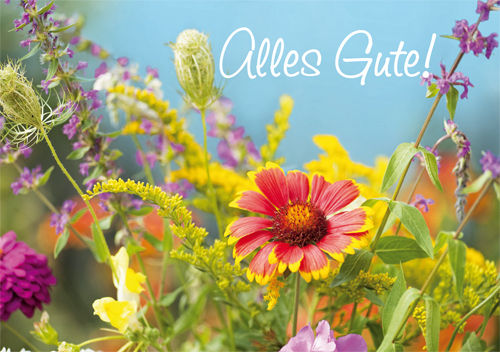 "Greeting card ""Alles Gute!"""