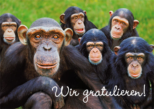 "Greeting card ""Wir gratulieren!"""